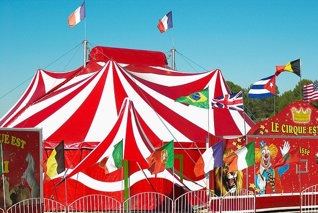 Im Zirkus (PDF)
